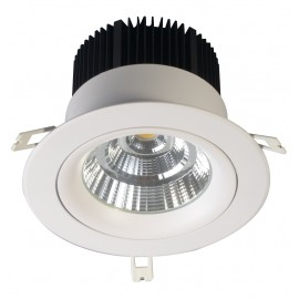 DOWNLIGHT COB Φ160mm 30W